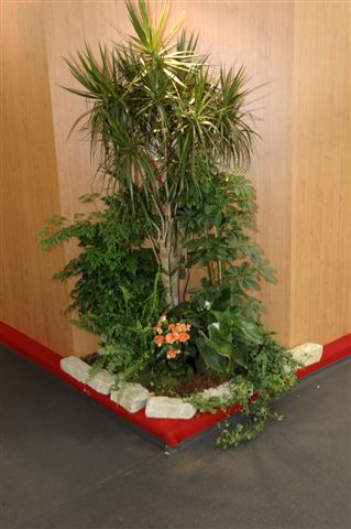 FOIRE INTERNATIONALE DE BORDEAUX location plantes metlin025075